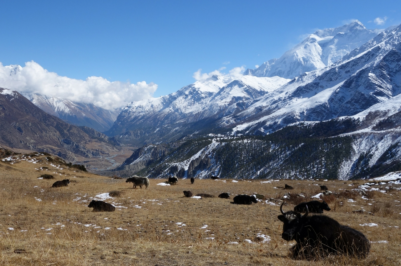 Trekking du Bas-Everest